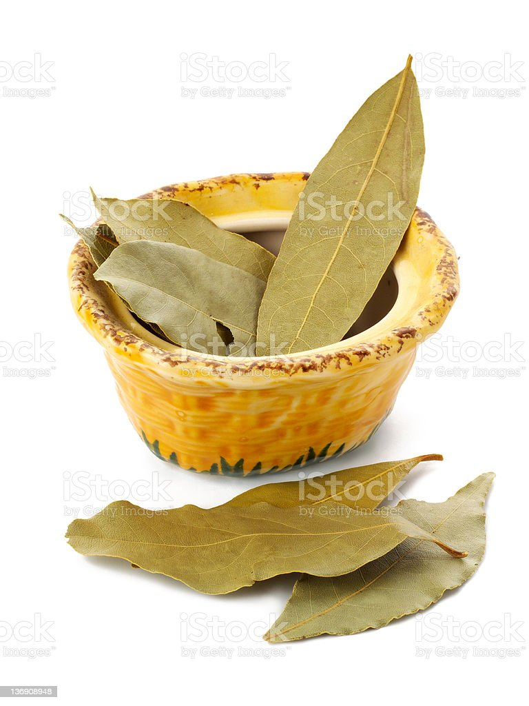Bay leaves in a ceramic pot, isolated royalty-free stock photo