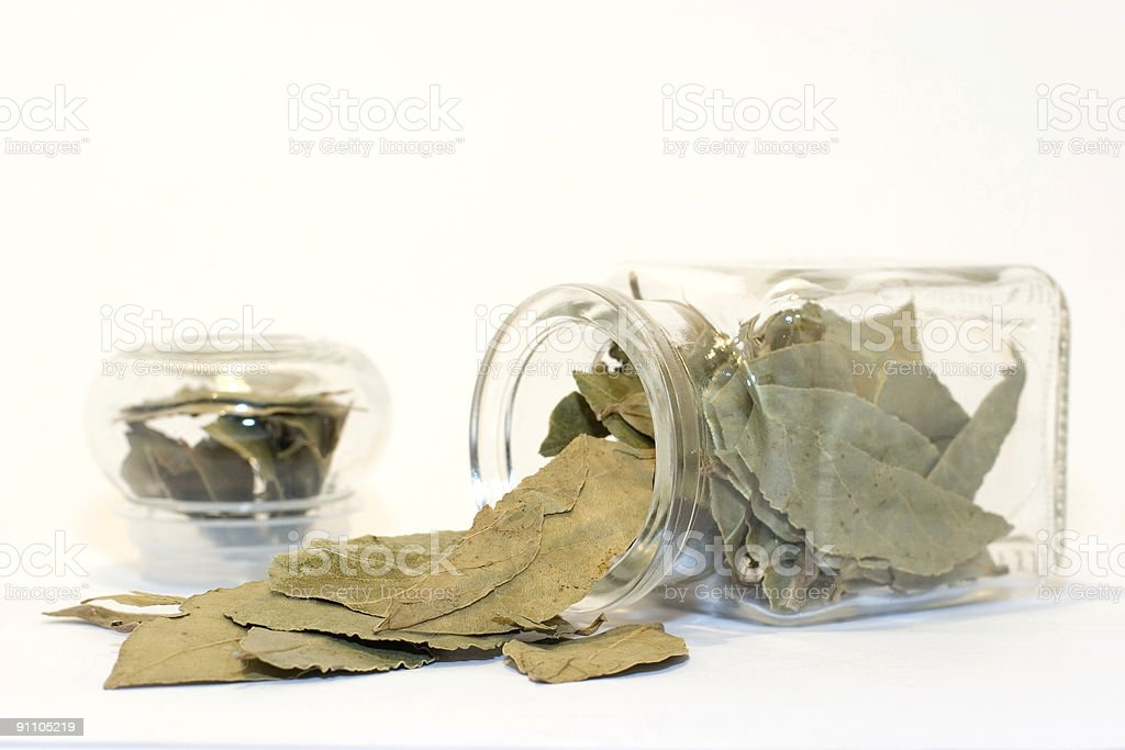 Bay leaves in bottle on white royalty-free stock photo