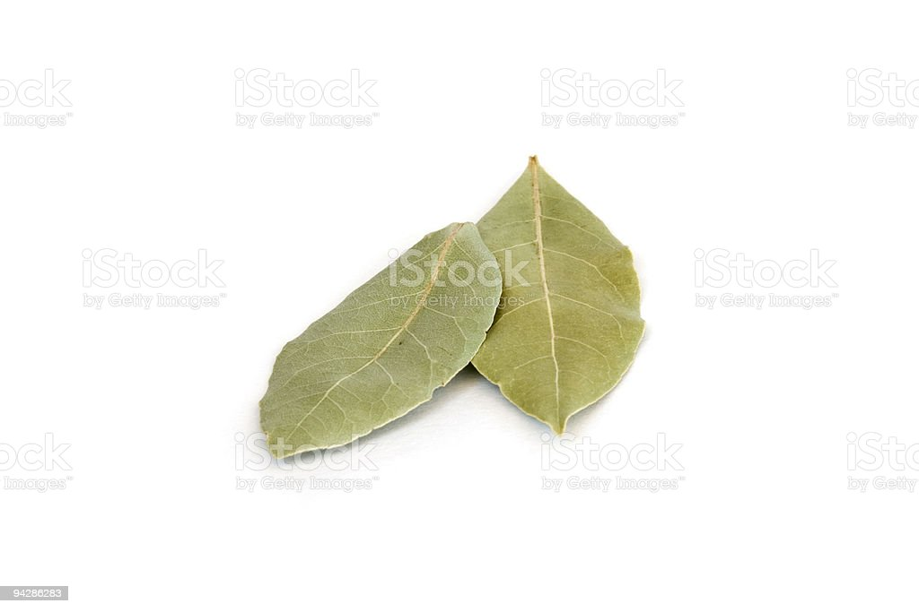 Bay leaves on white royalty-free stock photo
