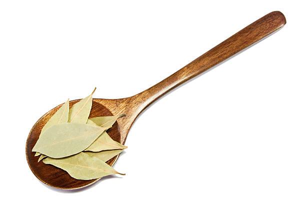 Bay Blätter auf hölzernen Löffel – Foto