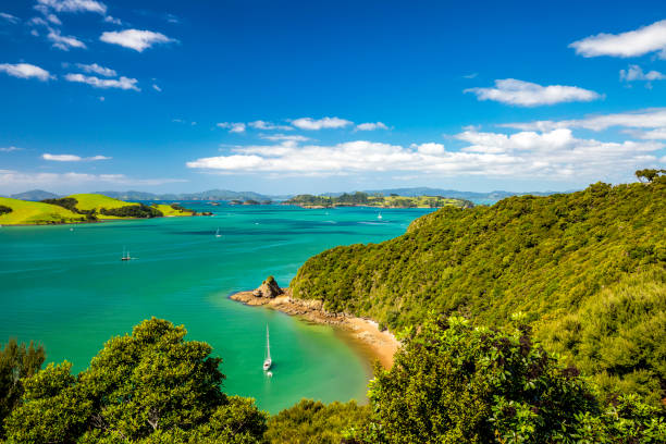 Bay of Islands, New Zealand stock photo