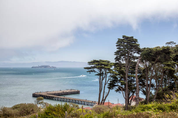 Bay View San Francisco Bay view with Alcatraz. san francisco bay stock pictures, royalty-free photos & images