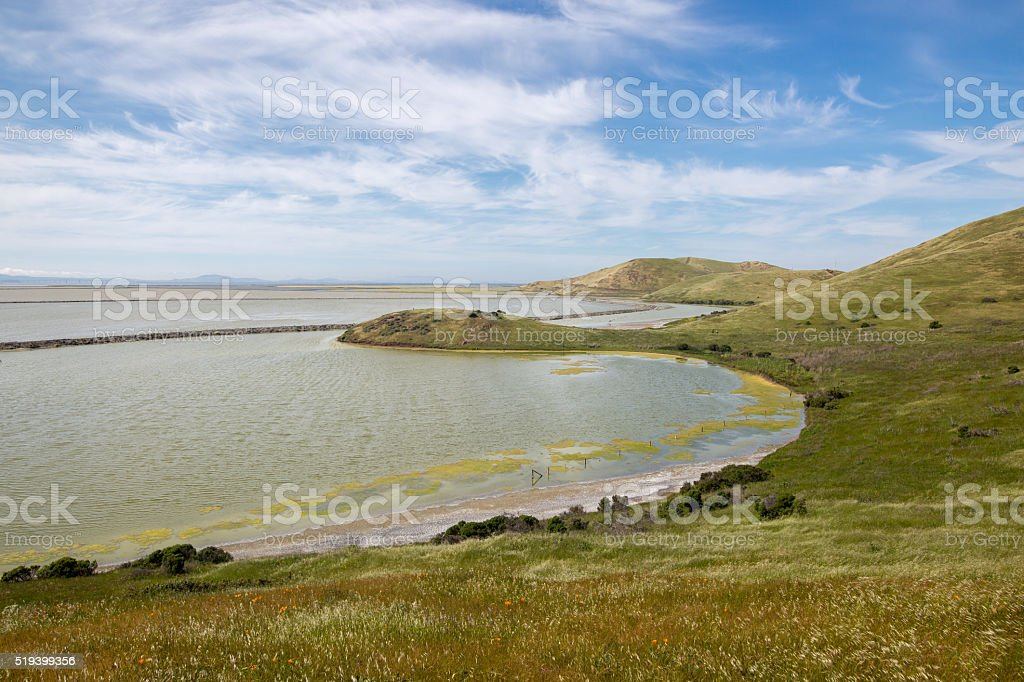 Bay View Trail, Coyote Hills Regional Park, East Bay, California stock photo