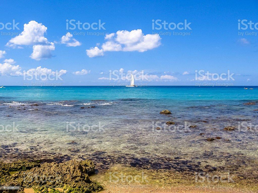 Bayahibe coral reef - foto de stock