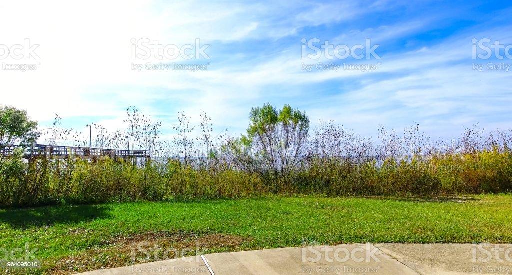 ベイフロントパーク - アメリカ合衆国のロイヤリティフリーストックフォト