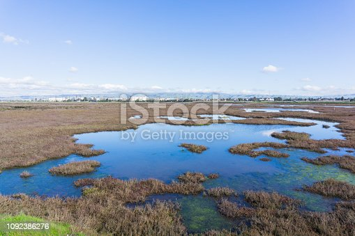 Baylands in Don Edwards wildlife refuge, Fremont, San Francisco bay area, California