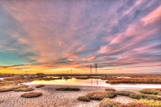 baylands sunset - dally stock pictures, royalty-free photos & images