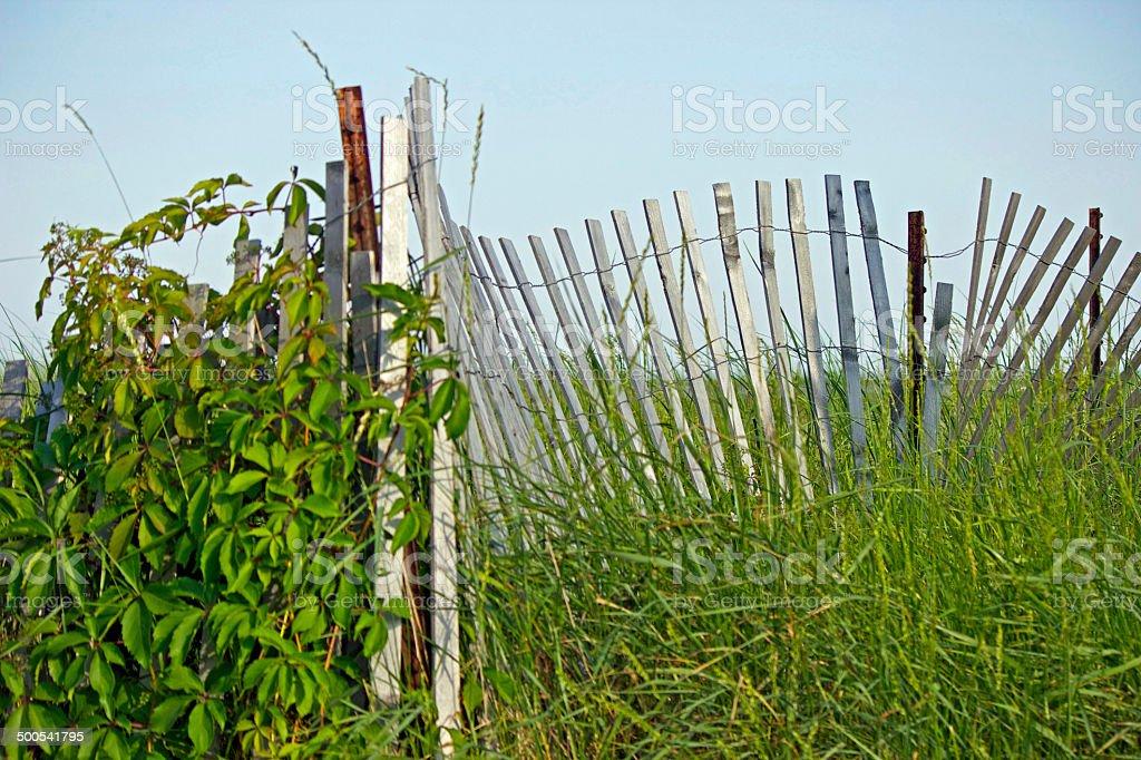Bayside Beach Fence stock photo