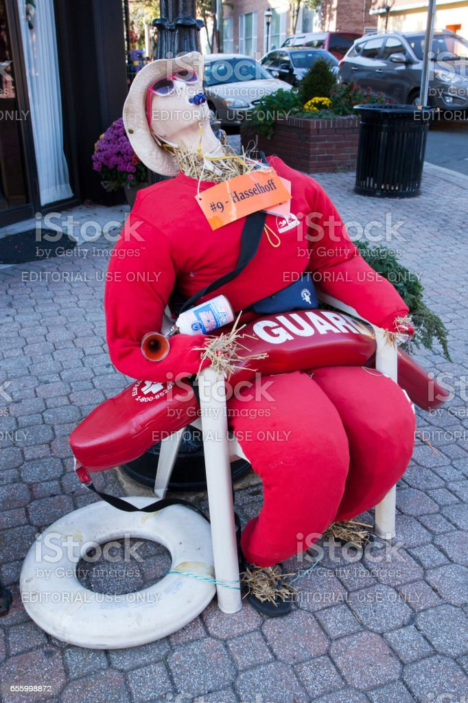 Baywatch Scarecrow stock photo