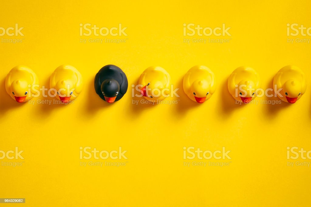 Be Different - Rubber ducks on yellow - Background Individuality Ideas stock photo