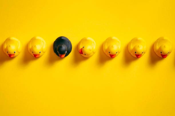 Werden Sie verschiedene - Gummienten auf gelb - Hintergrund Individualität Ideen – Foto