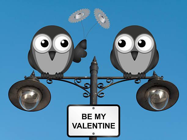 be my valentine - eule zeichnung stock-fotos und bilder