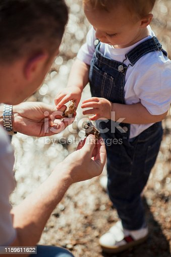 Man bending down to show his young son stones in his hands while they explore a beach in summer.