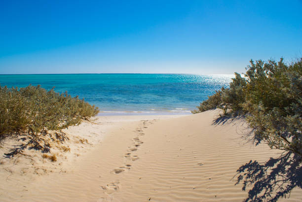 beach and blue sea - western australia stock pictures, royalty-free photos & images