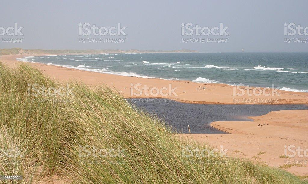 Spiaggia e sulle dune in inverno foto stock royalty-free