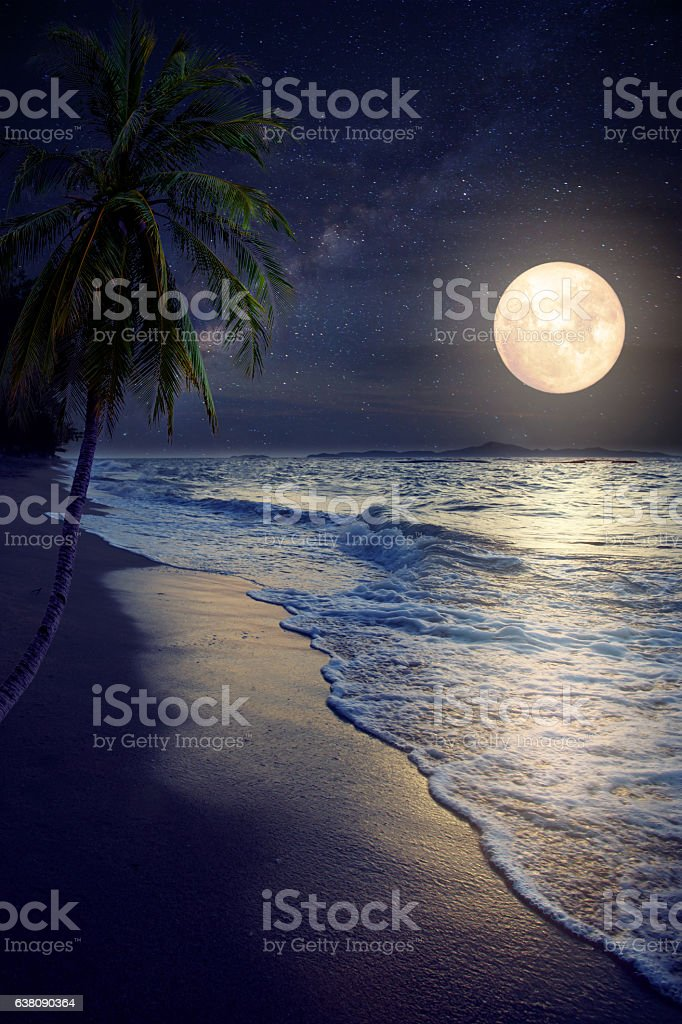 beach and full moon stock photo
