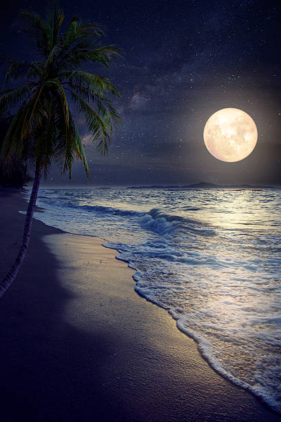 beach and full moon - romantic moon stock photos and pictures