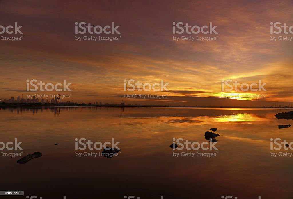 Beach and Ocean during Sunset royalty-free stock photo