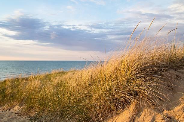strand und sanddünen - lake michigan strände stock-fotos und bilder