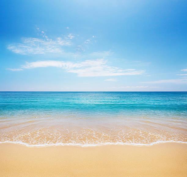Beach and tropical sea picture id106405766?b=1&k=6&m=106405766&s=612x612&w=0&h=gu 9df9i3cxssrvw048hcnold22o2ripyzyln2kobzi=