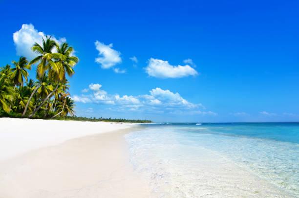 海灘和熱帶海。熱帶島嶼圖像檔