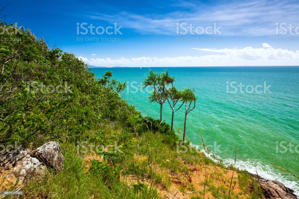 Beach and tropical vegetation from the lookout, Port Douglas stock photo