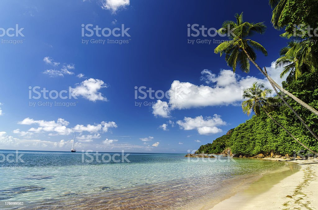 Beach and Turquoise Water stock photo