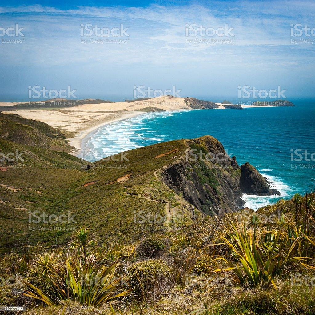 Beach at Cape Reinga stock photo