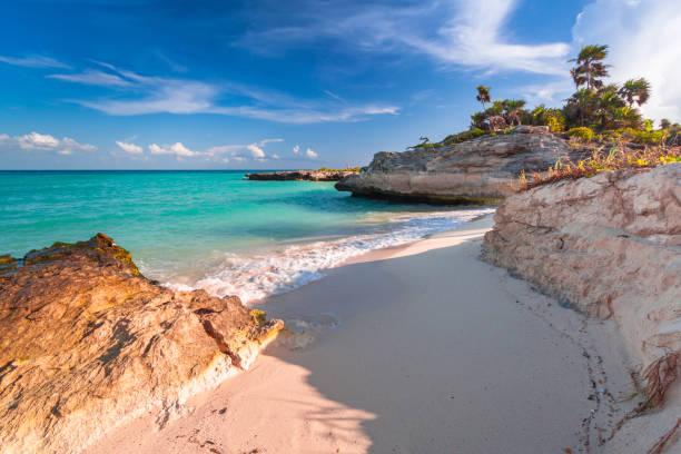 beach at caribbean sea in playa del carmen - playa del carmen stock photos and pictures