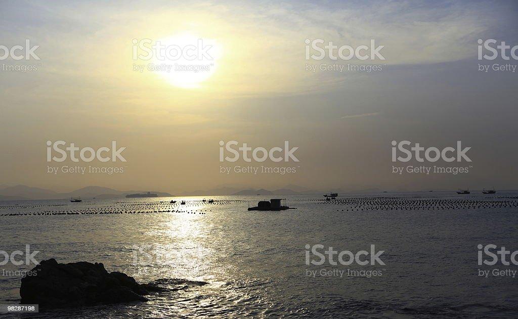 beach at dusk royalty-free stock photo