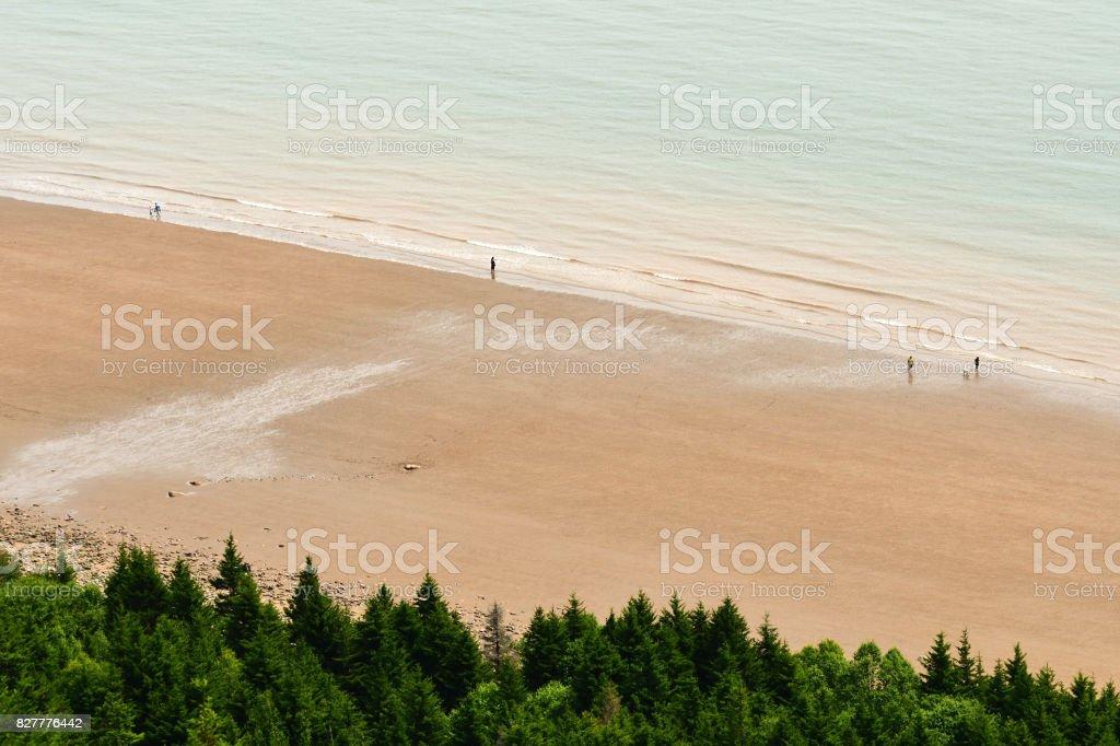 Beach at Fundy Trail Park (New Brunswick Canada) stock photo