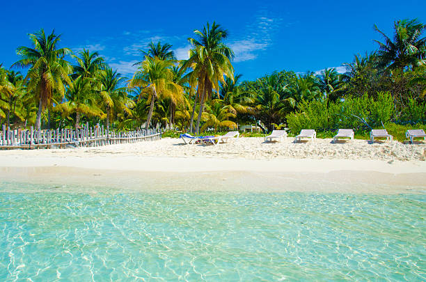 Strand von Isla Mujeres – Foto