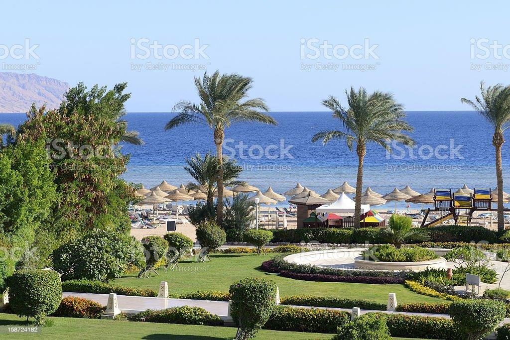Beach at luxury hotel, Sharm el Sheikh, Egypt royalty-free stock photo