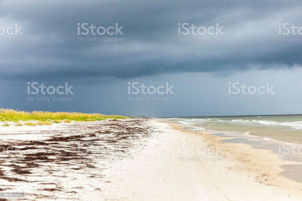 나쁜 날씨에 태평양 바다에 비치 - 로열티 프리 0명 스톡 사진