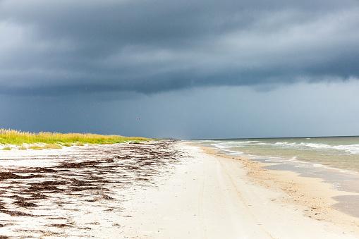 나쁜 날씨에 태평양 바다에 비치 0명에 대한 스톡 사진 및 기타 이미지