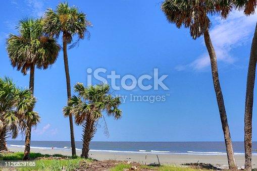 Beach at South Carolina