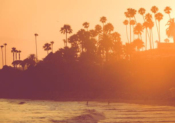 beach at sunset, california - california stock photos and pictures