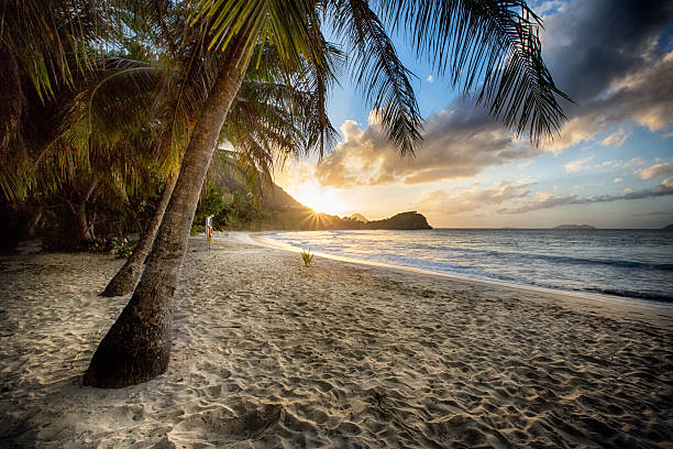 beach at sunset - caribbean culture stock pictures, royalty-free photos & images