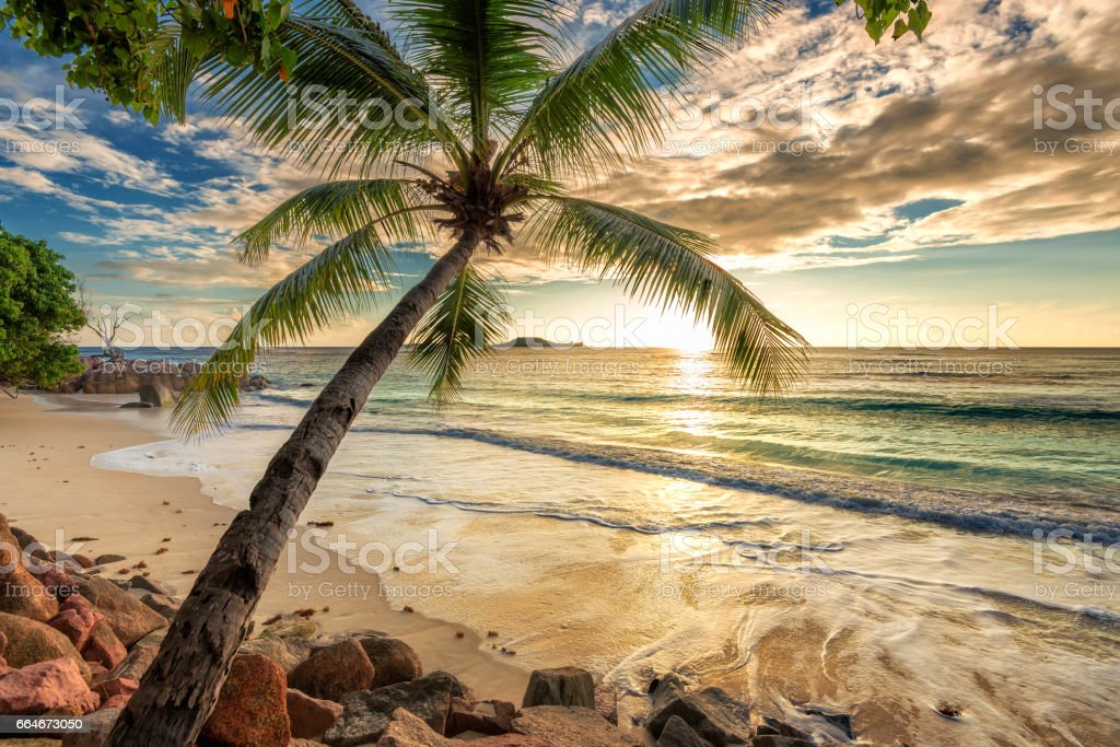 Beach at sunset - foto de stock