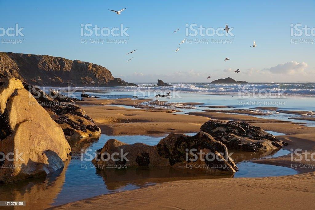 Beach At The Cote Sauvage in Quiberon stock photo