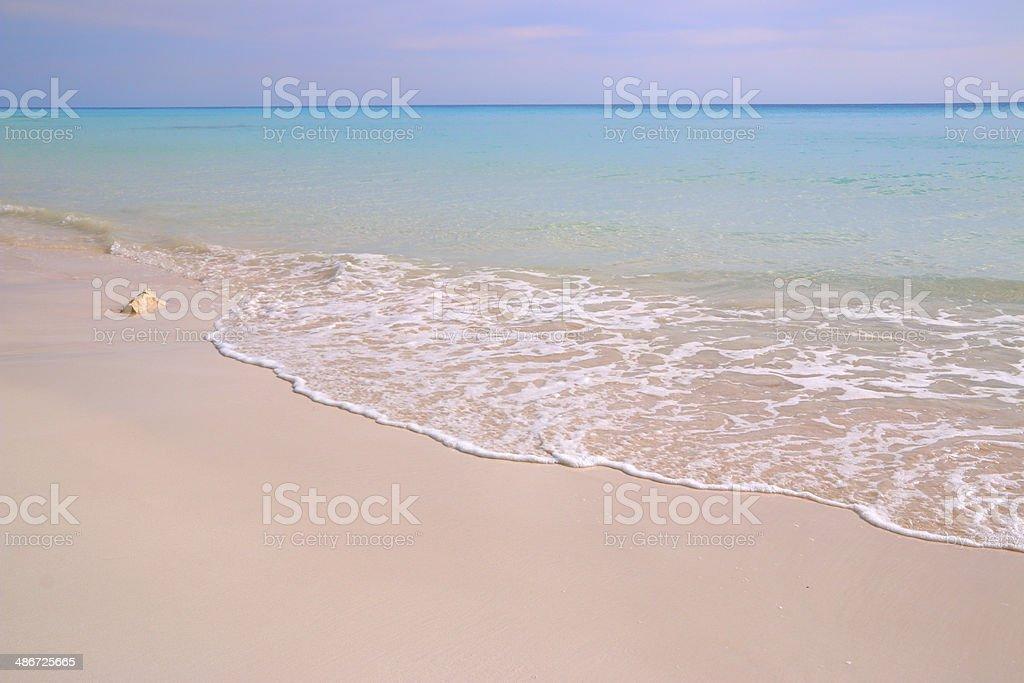 Plaża w tle – zdjęcie
