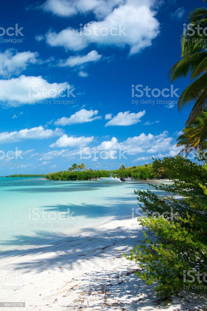 beach background stock photo more pictures of backgrounds istock
