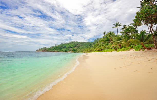 Beach Baie Lazare, Seychelles Island stock photo
