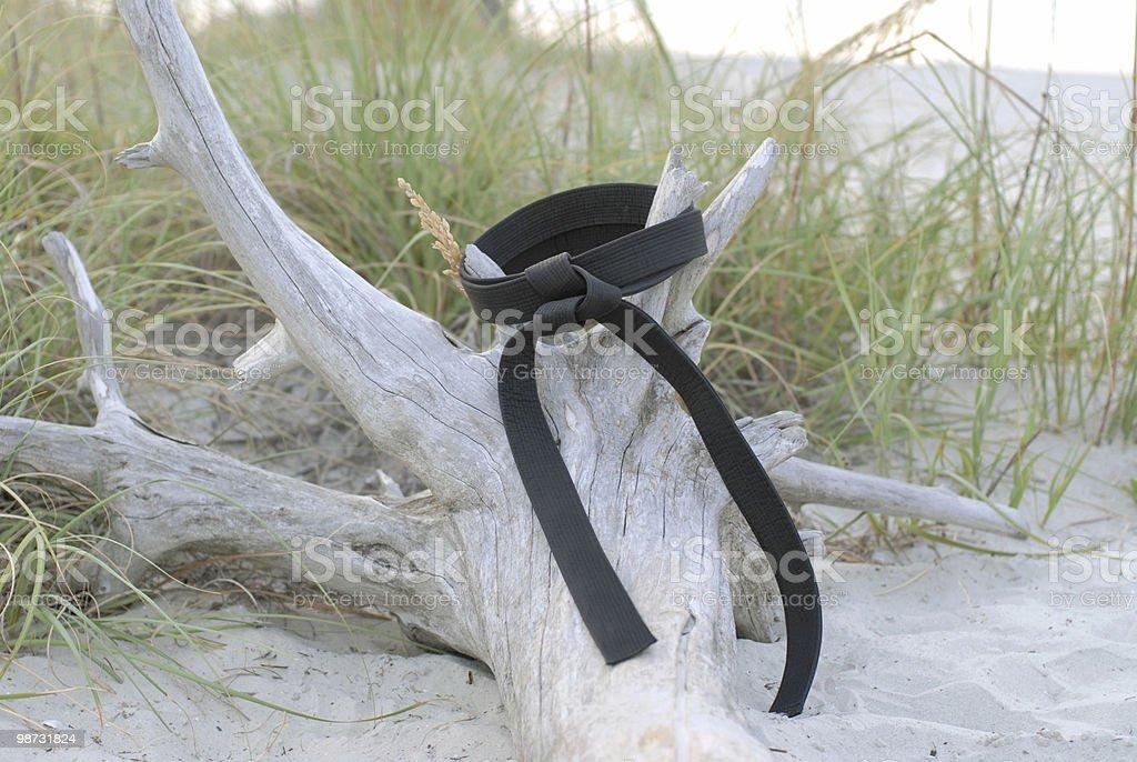 Playa de la correa negra foto de stock libre de derechos