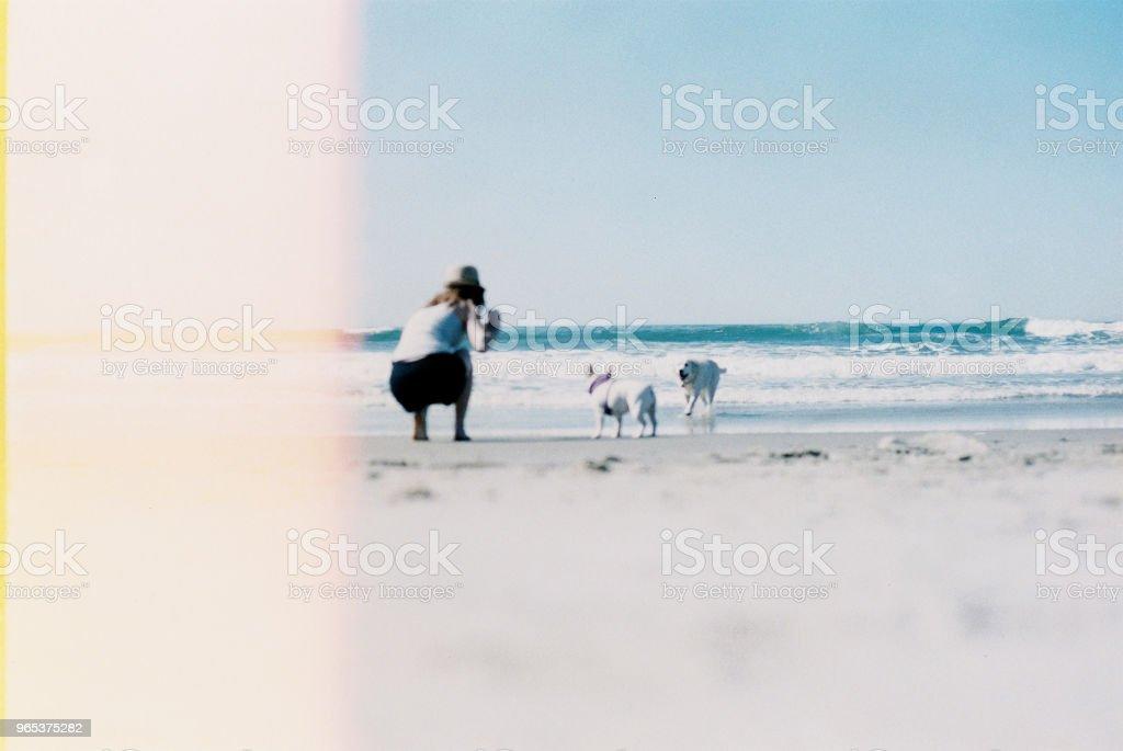 Beach Bliss zbiór zdjęć royalty-free