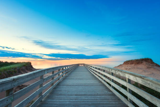 beach boardwalk and sand dunes in prince edward island canada - prince edward island stock photos and pictures