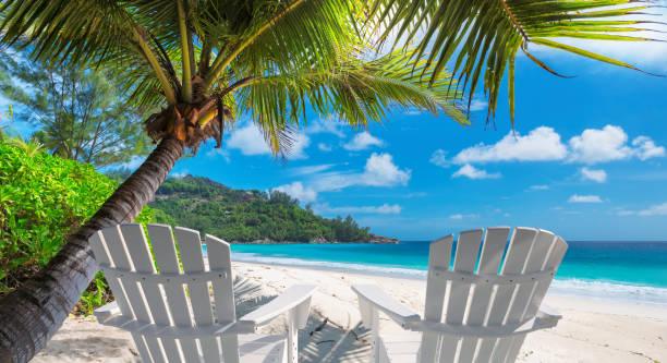beach chairs on tropical beach - bahamas foto e immagini stock