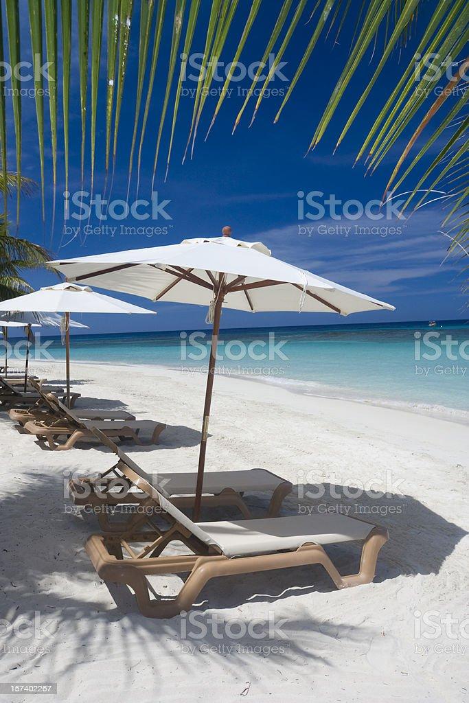 Beach Chairs XL royalty-free stock photo
