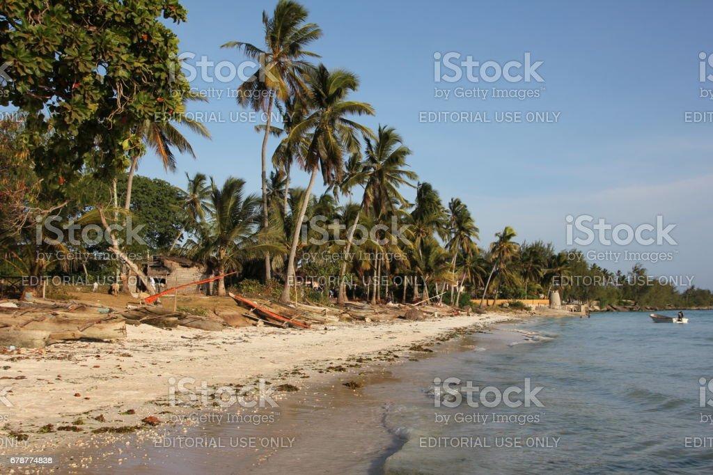 Beach close Kizimkazi, Zanzibar Island, Tanzania, Indian Ocean, Africa photo libre de droits