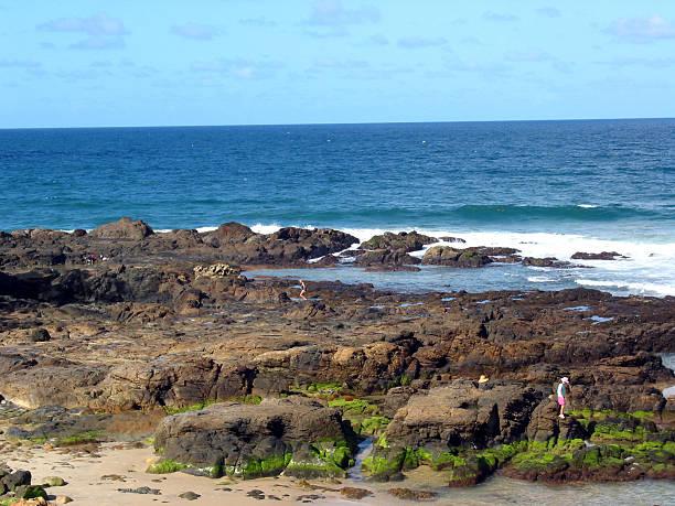 Beach Combers stock photo